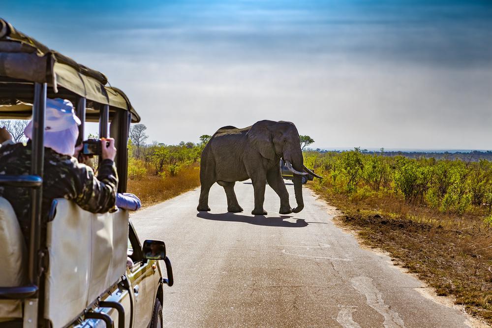 VOYAGES PHOTO D'AFRIQUE DU SUD